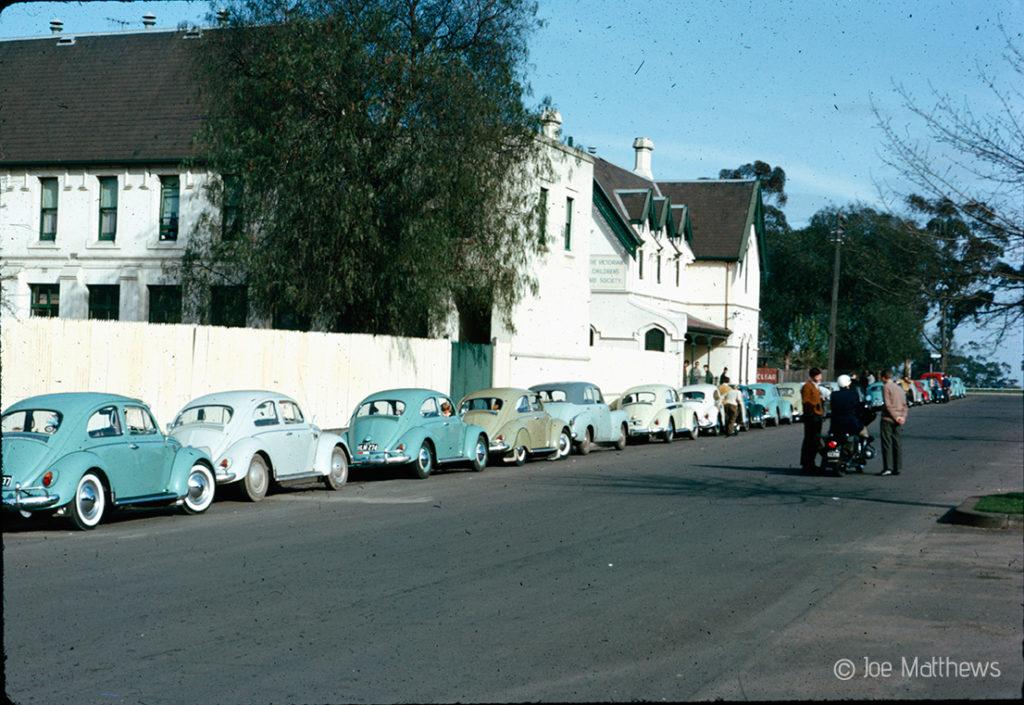 Volkswagen Beetles on side of road