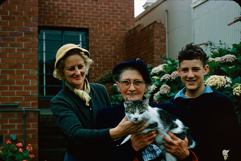 two ladies a boy and a cat